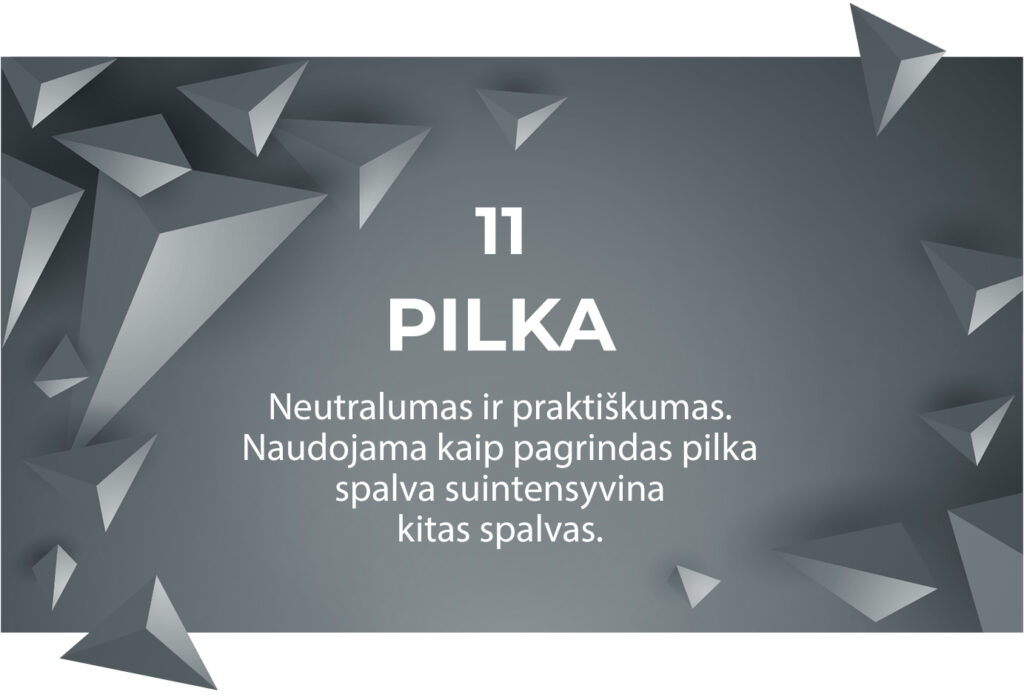 11Pilka 1024x700