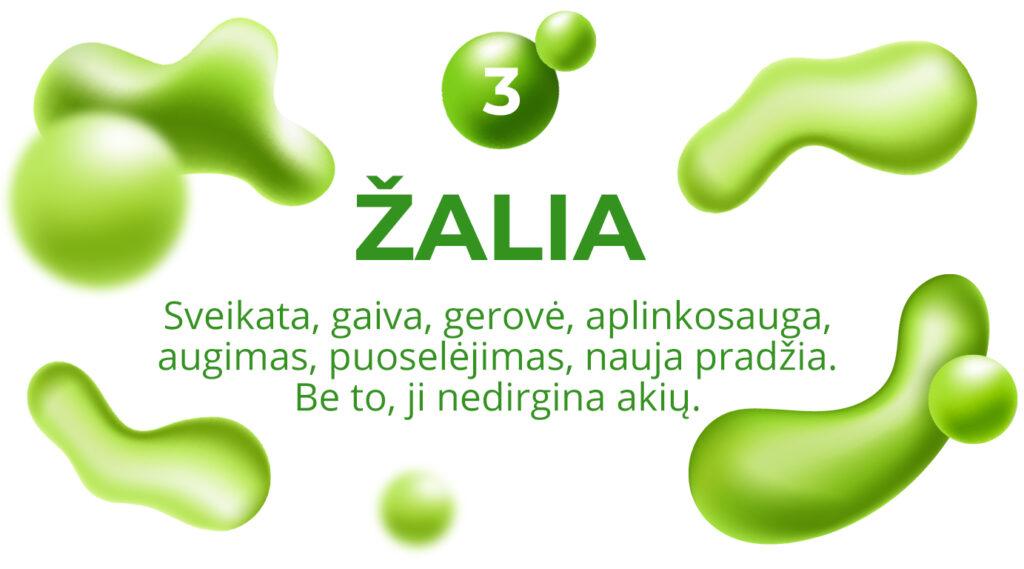 3 Zalia 1024x569