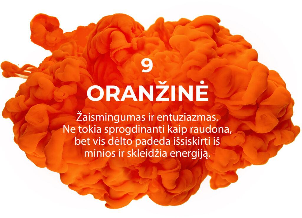 9 Oranzine 1 1024x738